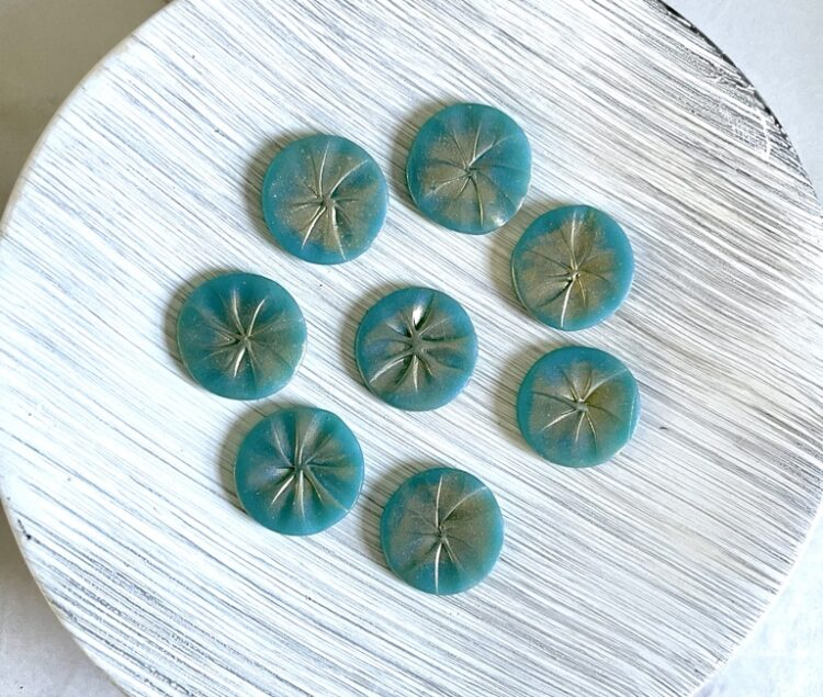 Turquoise Beachy Stud Earrings